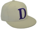 CUSTOM MAKE ACRYLIC FLATBRIM CAP WITH 3D EMBROIDERY